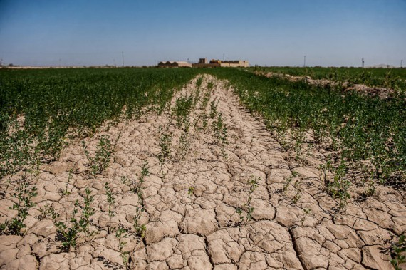 خشکسالی و استارت اب